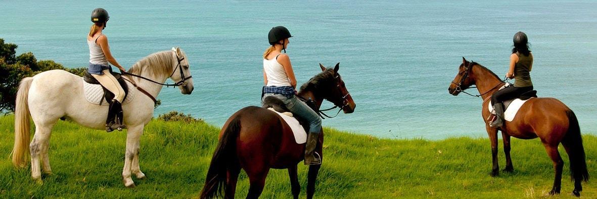 Passeggiate a cavallo lago di Garda